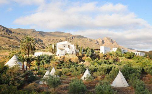 Oasis Al-Hamam